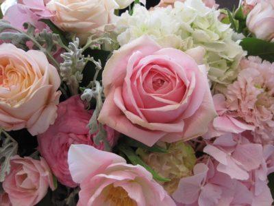幸せ香水。 春を呼ぶローズ!
